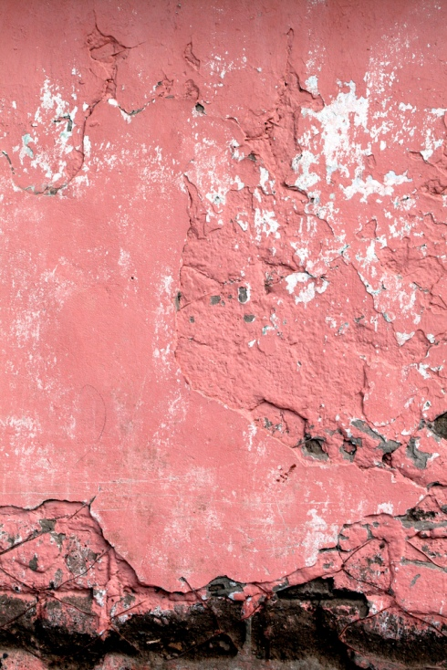 photograph of a pink wall